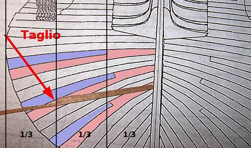 Per identificare la zona dove incastrare i listelli si divide idealmente lo scafo in tre sezioni.
